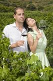 Couple of agrarian people wine in vineyard Royalty Free Stock Photo