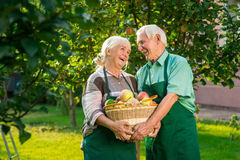 Couple with apple basket smiling. Cheerful senior people outdoor. Life, love and health Stock Photo