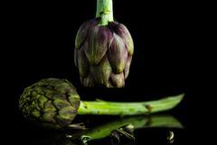 Artichokes posed and suspended reflecting. A couple of artichokes on a black background and a reflective base, one is suspended like a lamp Royalty Free Stock Photos