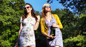 Couple of attractive girlfriends on the walk Royalty Free Stock Photography