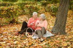 Couple in autumn park. Beautiful caucasian elderly couple in the park in autumn Stock Photography