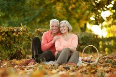 Couple in autumn park Royalty Free Stock Image