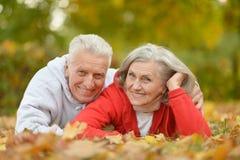 Couple in autumn park Stock Photos