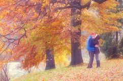 Couple in autumn park Royalty Free Stock Images