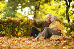 Couple in autumn park Stock Image