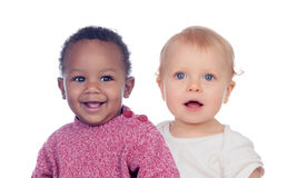 Couple of baby isolated Stock Image