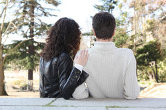 Couple, back-view Stock Images
