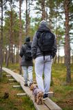 Couple with backpacks and little dog walking in forest Stock Photography