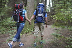Couple With Backpacks Walking In Forest Stock Image