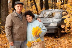 Couple with basket of maple leaves near black car. Old man and old woman with basket of maple leaves near black car in autumnal forest Royalty Free Stock Images