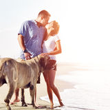 Couple on the beach with dog kissing Stock Photo