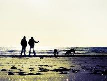 Couple beach dogs walking Royalty Free Stock Photo