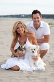 Couple on beach with pet dogs. Happy couple relaxing on sandy beach with two cute pet dogs Royalty Free Stock Images