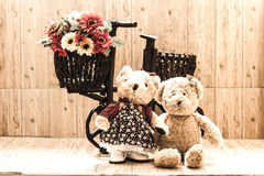 Couple Bears Stock Image