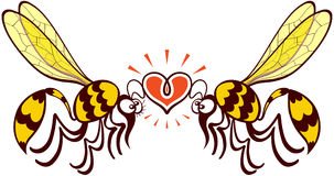 Couple of beautiful wasps deeply falling in love. Impressive couple of wasps flying, staring at each other and forming a shiny heart with their antennae Stock Image