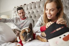 Couple In Bed At Home With Dog Dressed In Santa Costume Opening Gifts On Christmas Day royalty free stock photos