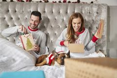 Couple In Bed At Home With Dog Dressed In Santa Costume Opening Gifts On Christmas Day stock image