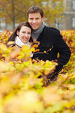 Couple behind hedge in autumn park Royalty Free Stock Photo