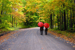 Couple beneath Red Umbrellas Stock Photography