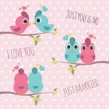Couple bird branches - pink and blue bird sweet love 3 style Stock Photos