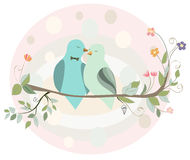 Couple of birds in love on a branch Stock Image