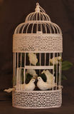 Couple of birds in love in a cage. Vintage. Royalty Free Stock Photos