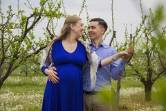 Couple in blooming garden Royalty Free Stock Photography