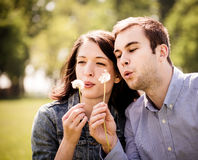 Couple blowing dandelions Stock Photo