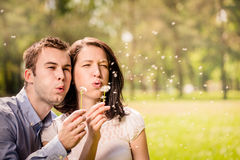 Couple blowing dandelions Royalty Free Stock Photography