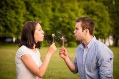 Couple blowing dandelions Stock Image