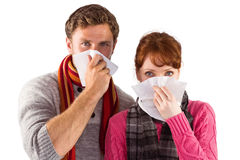Couple blowing noses into tissues Royalty Free Stock Photography