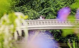 Couple on Bow Bridge in Central Park. Handsome smiling Caucasian men with his arm around a pretty young Indian women kissing her forehead on Bow Bridge in royalty free stock image