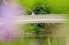 Couple on Bow Bridge in Central Park. Handsome smiling Caucasian men with his arm around a pretty young Indian women kissing her forehead on Bow Bridge in royalty free stock photo