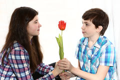 Couple boy and girl brother present flower Stock Photos