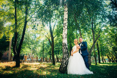 Couple bride and groom on the background of the park`s trees Royalty Free Stock Image