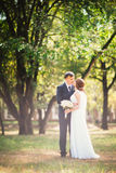 Couple bride and groom on the background of the park`s trees Royalty Free Stock Photos