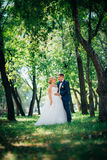 Couple bride and groom on the background of the park's trees Stock Images
