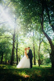 Couple bride and groom on the background of the park's trees Stock Photos
