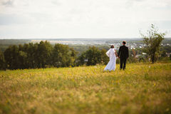 Couple bride and groom on field background Stock Photography