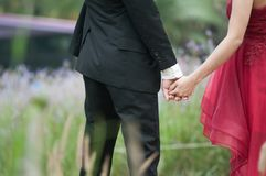 Couple bride in wedding gown and  groom in suit hand in hand. Stock Images