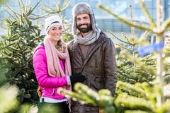 Couple buying Christmas tree on market Royalty Free Stock Images