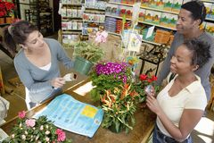 Couple Buying Flower Plant Stock Images