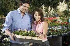 Couple Buying Flower Plants Stock Photography