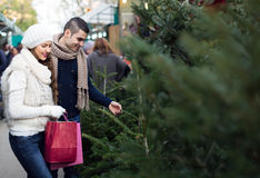 Couple buying a New Year tree. Stock Images