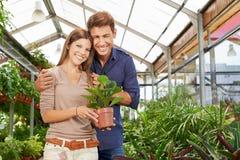 Couple buying plant in garden center. Happy couple buying a green plant in garden center stock photography