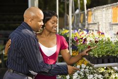 Couple buying plants. Royalty Free Stock Photography