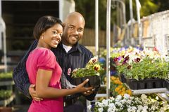 Couple buying plants. Stock Photos