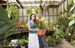 Couple Buying Potted Plant Royalty Free Stock Image