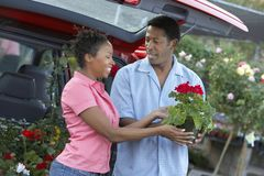 Couple Buying Potted Plant Stock Images