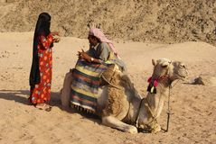 Couple and the camel Stock Image